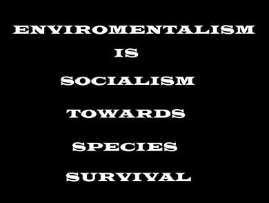 Enviromentalism2